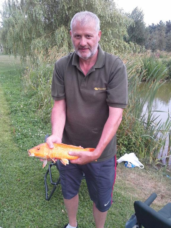 A golden catch